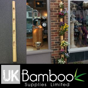 Bamboo Planter - 80/100mm Natural Bamboo 2m, 4x holders