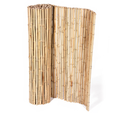 UK Bamboo supplies - Homepage