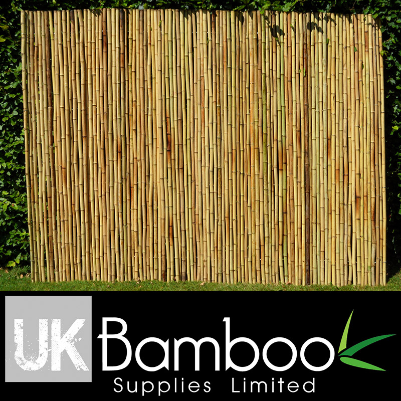 20/25mm Natural Moso Bamboo Screen x 2 metres (1in x 6ft7)