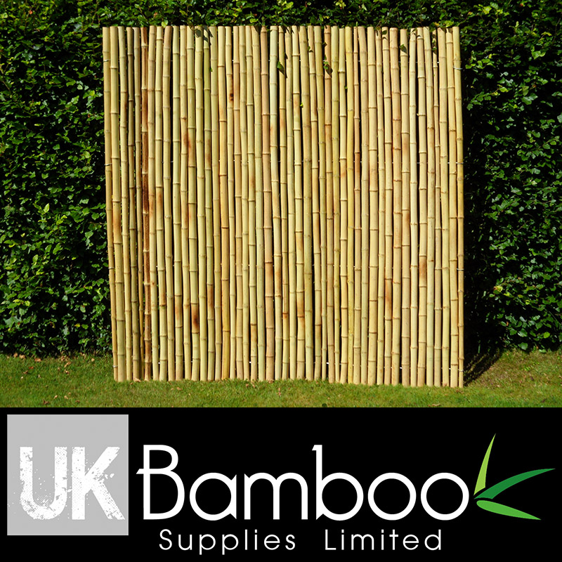30/40mm Natural Moso Bamboo Screen x 2 metres (1.4in x 6ft7)