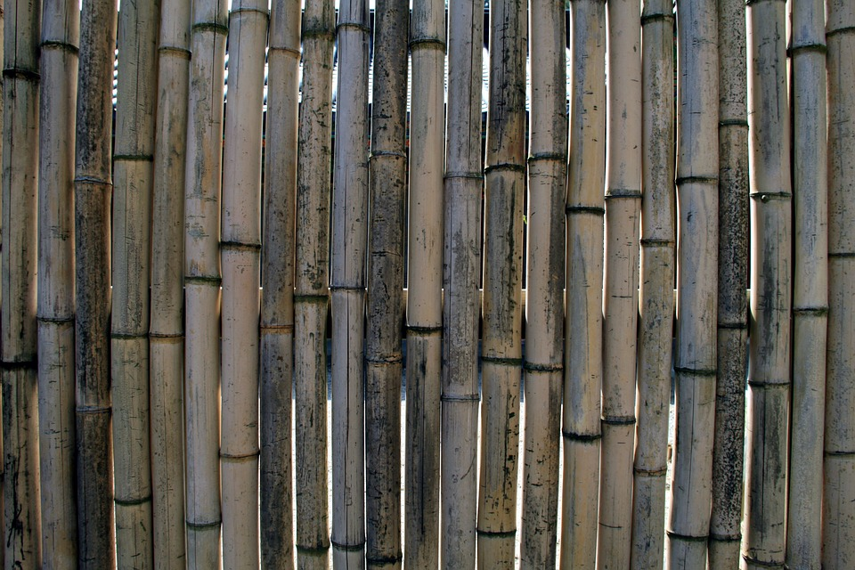 UK Bamboo supplies - Garden Products