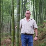 UK Bamboo supplies - Wholesale Bamboo