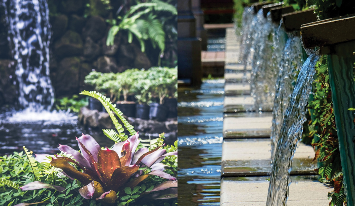 UK Bamboo supplies - Designing a Water Feature with Bamboo