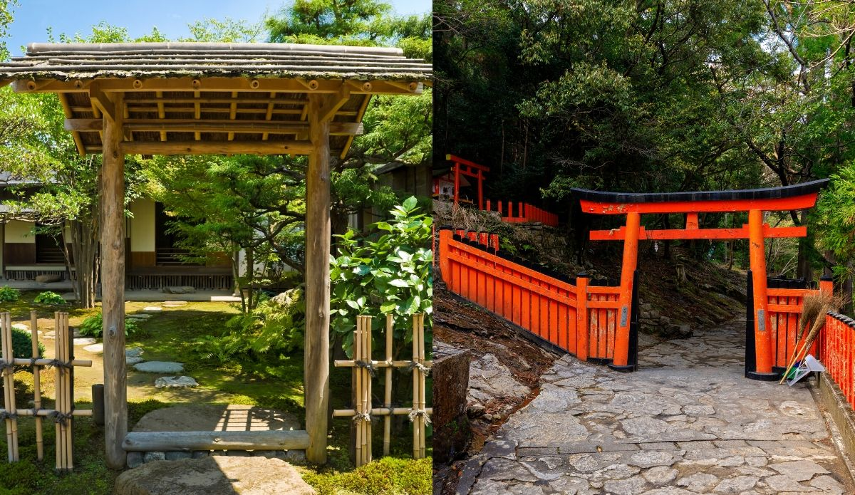 UK Bamboo supplies - Top Tips for a Beautiful Japanese Garden