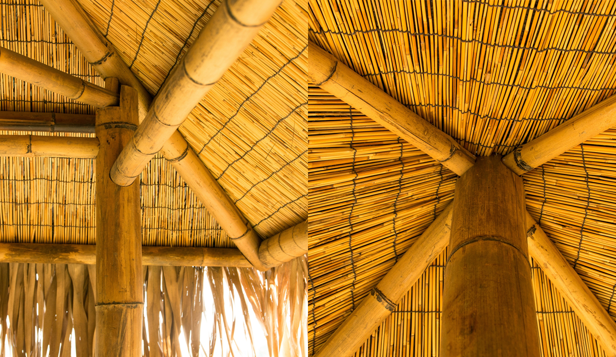 UK Bamboo supplies - Green Architecture means learning to grow our building materials