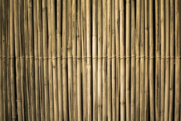 UK Bamboo supplies - Guest Article - How to Conserve Water With Eco-Friendly Lawn Care