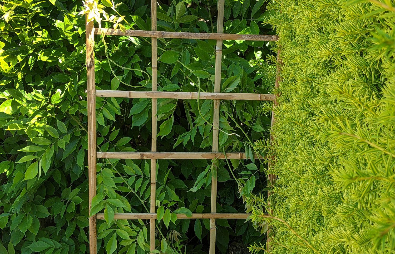 UK Bamboo supplies - Garden ideas using our new Bamboo garden range!